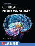 clinical-neuroanatomy